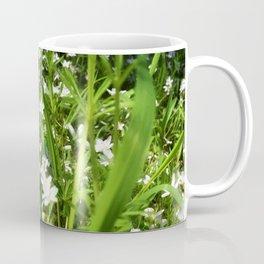 Spring Beauty 13 Coffee Mug