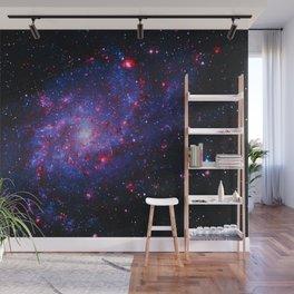 Triangulum Galaxy Wall Mural