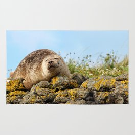 Seal at Dunvegan Castle, Scotland Rug