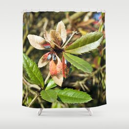 MAGIC COLOURS - SPRING  Shower Curtain