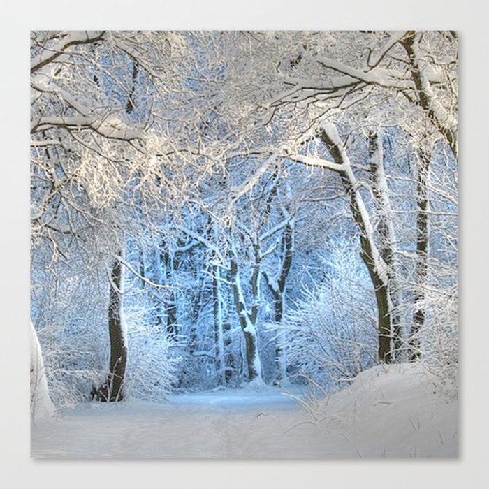 Another winter wonderland Canvas Print