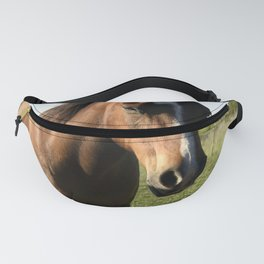 Brown Horse in a Pasture Fanny Pack