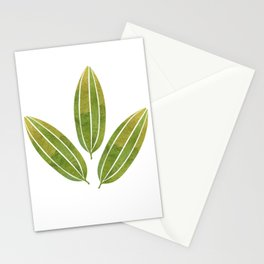 Watercolor green leaves of mango Stationery Cards