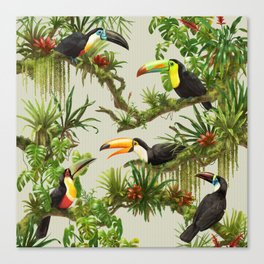 Toucans and Bromeliads (Canvas Background) Canvas Print