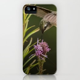 Hummingbird and deck flowers iPhone Case