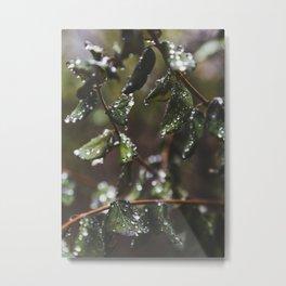 Mountain Dew Metal Print