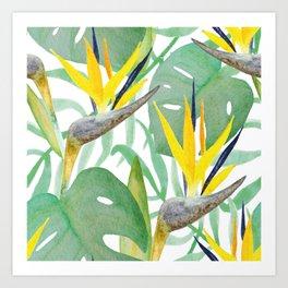 Tropical Birds Of Paradise Art Print