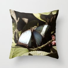 Blue and Black Butterfly Color Photography Throw Pillow