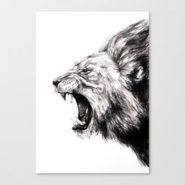 Timothy Canvas Print