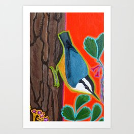 Red Breasted Nuthatch Art Print