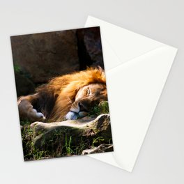 # 189 Stationery Cards
