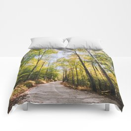 Forest Road - Muir Valley, Kentucky Comforters