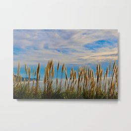 Fort Bragg's Ocean Cattails Metal Print