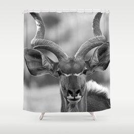 Greater Kudu B&W Shower Curtain