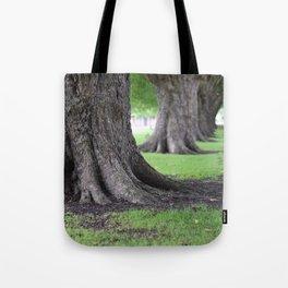 Cambridge tree 4 Tote Bag