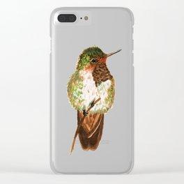 Volcano Hummingbird Clear iPhone Case