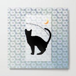cat_moon Metal Print
