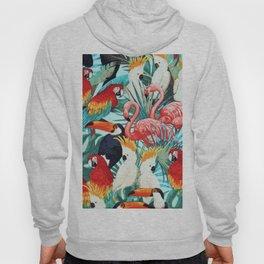 Exotic birds Hoody