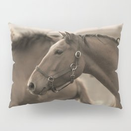 Horses in a stud Pillow Sham