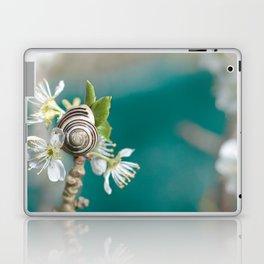 sea snail Laptop & iPad Skin