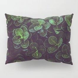 NATURE - LEAVES - FRESH - PHOTOGRAPHY Pillow Sham