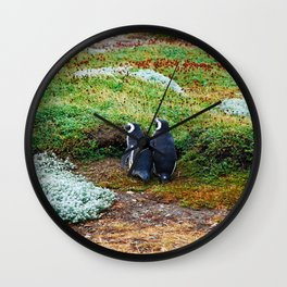 Magellanic Penguins Wall Clock