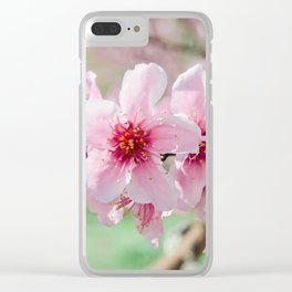 Peach Blossoms 15 Clear iPhone Case