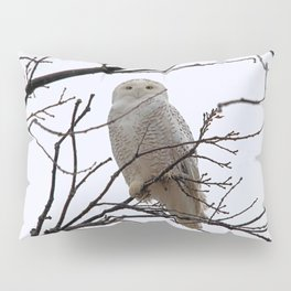 Snowy Owl in the Treetop Pillow Sham