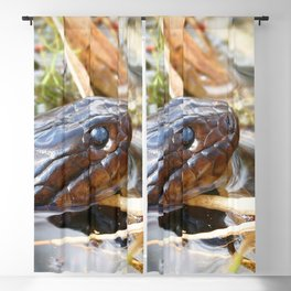 Watercolor Reptile Eastern Water Snake 05 Blackout Curtain