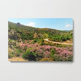 landscape with oleander Metal Print