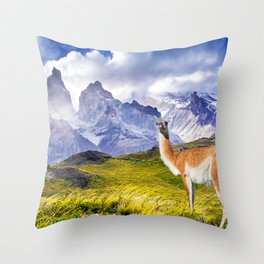 Patagonia landscape in Torres del Paine, Chile Throw Pillow
