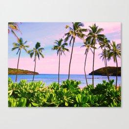 Hanauma Bay, Hawaii Canvas Print