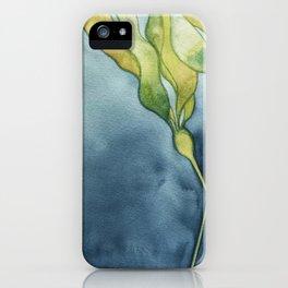 Bull Kelp Watercolor iPhone Case