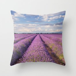 Blooming fields of lavender in the Provence, southern France Throw Pillow