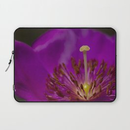 A Macro Image of a Purslane Flower Pistil, Stamen and Petals Laptop Sleeve