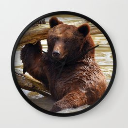 Majestic Large Grown Grizzly Bear Clinging Onto Fleetwood In Lake Ultra HD Wall Clock