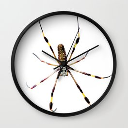 Watercolor Graphic 11, Spider Crawl, Golden Orb-weaver Snow Wall Clock