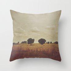Perfect Couple Throw Pillow