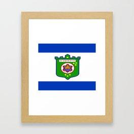 flag of tel aviv Framed Art Print