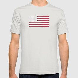 USA Baseball Flag T-shirt