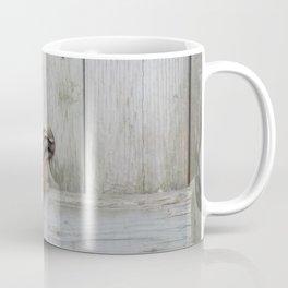 Where are my nuts? Coffee Mug