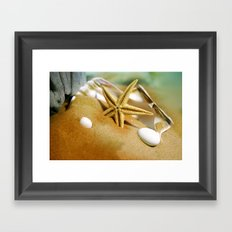 Sea shells II Framed Art Print