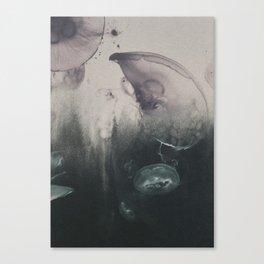Mindflight Canvas Print