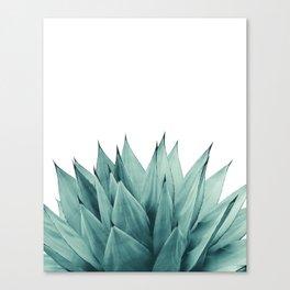 Agave Vibes #8 #tropical #decor #art #society6 Canvas Print