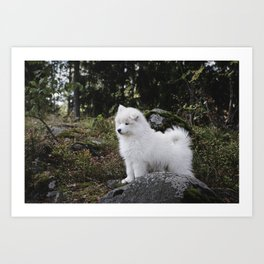 Samoyed dog puppy in the forest Art Print