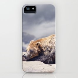 Large Brown Bear resting on rocks ,close up shot iPhone Case
