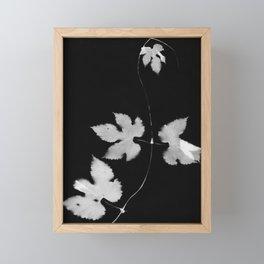 Black and White Hop Vine Framed Mini Art Print