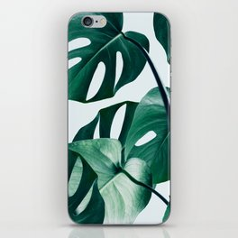 Monstera #society6 #artprints #buyart iPhone Skin