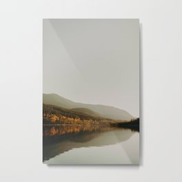 The Faded Forest on a River (Color) Metal Print
