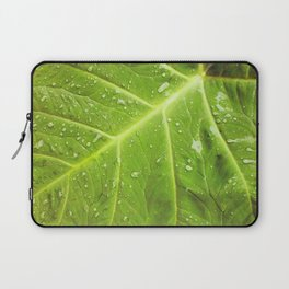 Alocasia After the Rain Laptop Sleeve